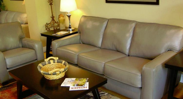 Leather Sofa & Chair Fort Mill SC